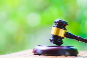 弁護士の【セカンドオピニオン制度】は必要なのか?